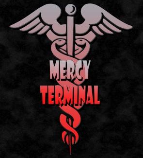 MercyTerminalReboot